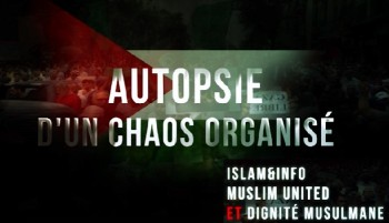 autopsie dun chaos organise
