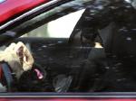 conduite femme arabie saoudite