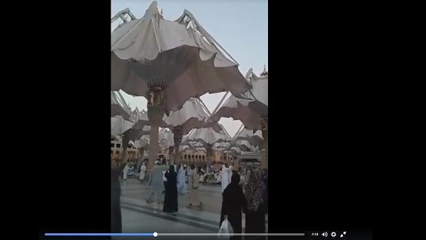 medine parasols mosquée du prophete