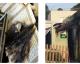 Une mosquée incendiée à Ajaccio, la piste islamophobe privilégiée [ VIDÉO ]
