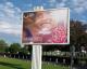 Secours Islamique France : Nour a besoin de vous !