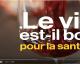 Le vin est bon pour la santé … Vraiment ? | Vidéo